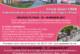 Tappa di Oropa – Giro d'Italia 2017 – MTB CSEN